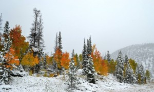 10-4-13 Snowy Range Wyoming
